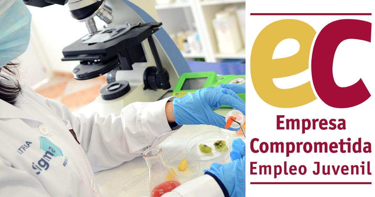 sigma-biotech-recibe-el-sello-de-empresa-comprometida-con-el-empleo-juvenil-otorgado-por-la-camara-de-comercio