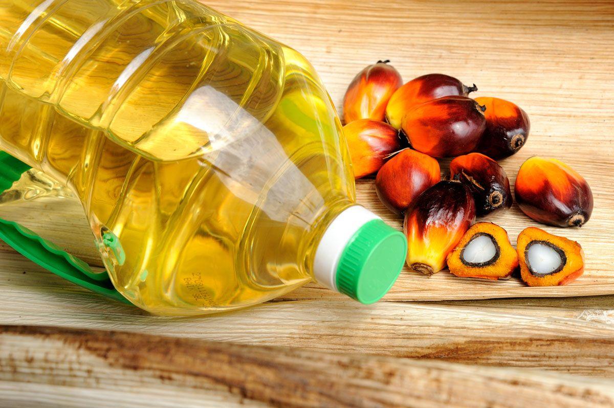 posible-sustituir-aceite-palma-producto-tipo-grasa-la-respuesta